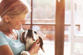 fibromyalgia pet therapy