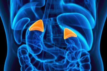 adrenal fatigue in fibromyalgia